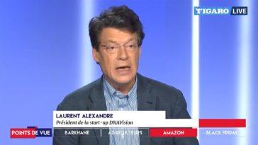 Laurent Alexandre Gilets Jaunes Glyphosate