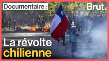 chili constitution