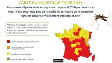 Moustique Tigre France