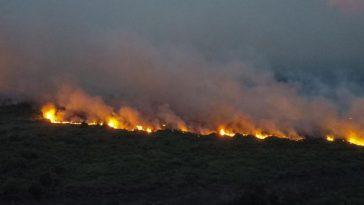 Pantanal en flamme