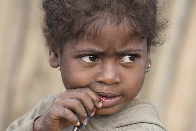 Madagascar famine